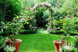 Сад в англійському стилі
