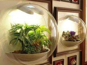 Робимо сад в пляшці
