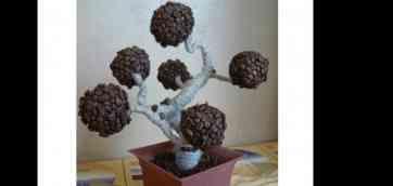 Вироби з кави, майстер клас кавове дерево Топиарий своїми руками з газетних трубочок by Країна Майстрів 2,859 views Thumbnail Що можна зробити з кави by Тимофій Кравець 1,072 views.