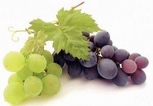 Виноград - фото, корисні властивості і протипоказання