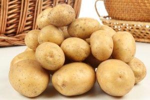 Заготівля картоплі